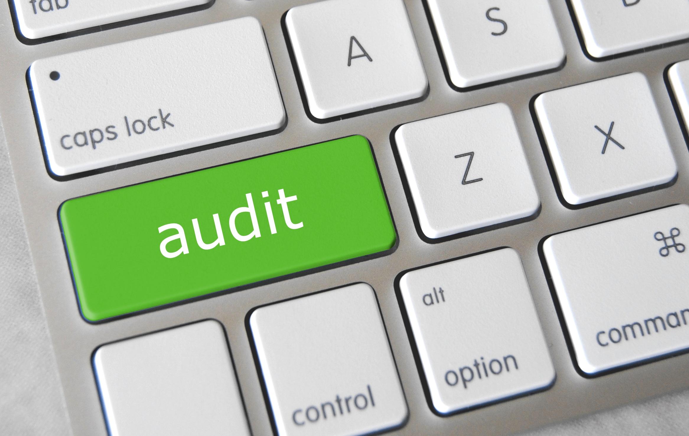Technical Website Audit.jpg